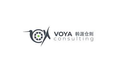 VOYAConsulting, Ltd.